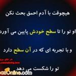 shadmehr_ashpazonline_weblog_1342185321
